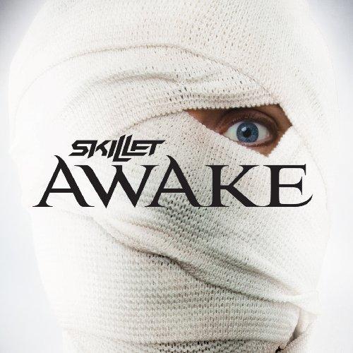 Skillet Awake скачать торрент альбом - фото 4